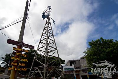 (Santa Cruz, Galapagos)